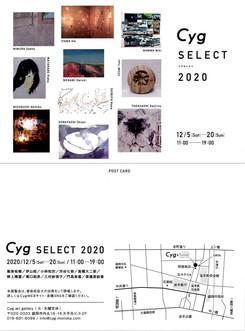 2020_Cyg_DM_wide.jpg