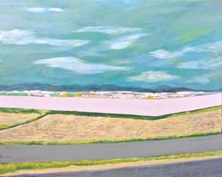 塀の向こうにあるもの。803x1000mm 2017 油彩キャンバス