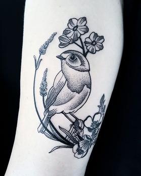 Beautiful Blackwork Bird by @maz_tattoo