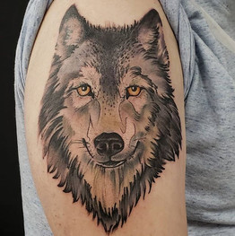 Neo trad type wolf by @elydoestattoos #w
