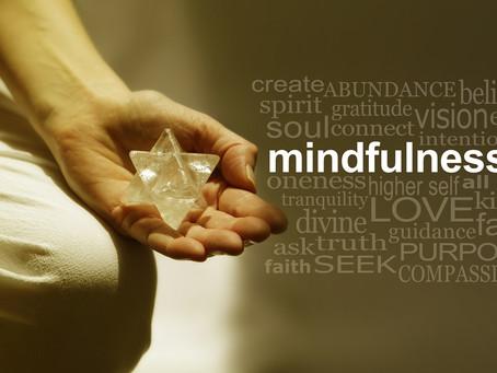 MEDITATION FACTS!