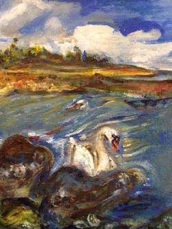 Sannox Beach Swan(s)