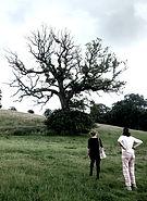 lightning tree_edited_edited.jpg