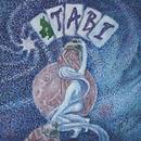 TABI_star_log_crop_header.png