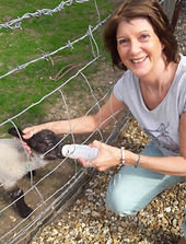 Feeding orphaned lamb feeds your own soul