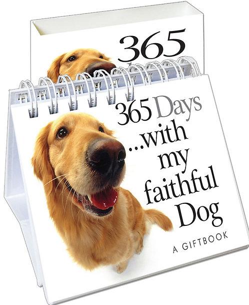 365 Days with my Faithful Dog