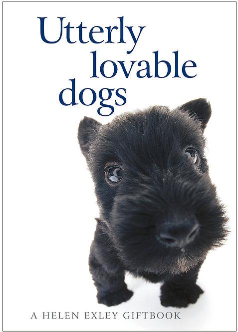 Utterly loveable Dogs