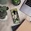 Thumbnail: Samsung Case - Joseph Haydn - by Schirka El Creativo
