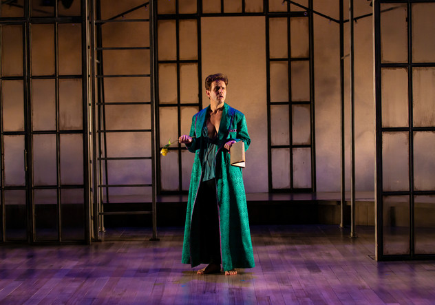 Twelfth Night TRTC 1-20 205.jpg