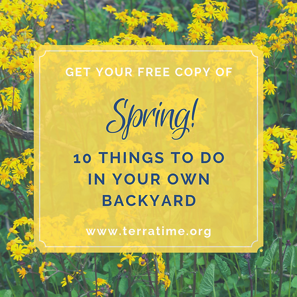 Spring! 10 Things to Do in Your Own Back