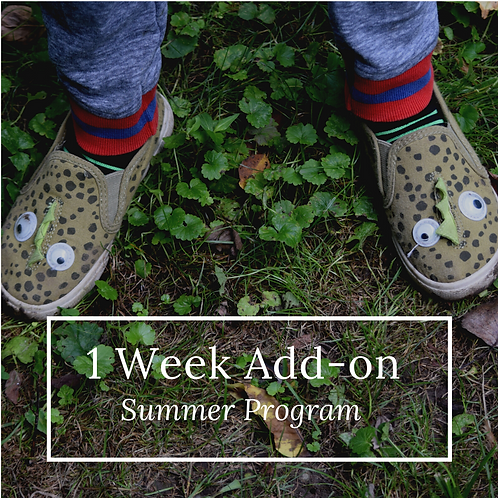 Add on a Week of Summer -  Purchase Before March 31
