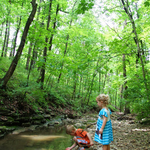 A Beginner's Guide to Hiking With Children