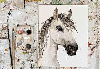 paard_edited_edited.jpg