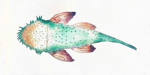 green fish SOLD!