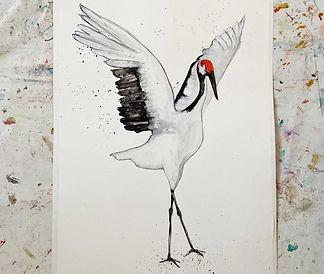 kraanvogel.jpg