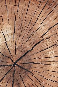close-up-hardwood.jpg