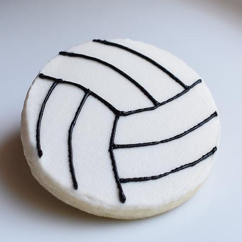 Volleyball  -  $18-$29