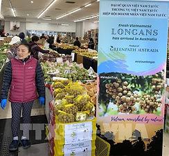 Theo TS Nguyễn Văn Kiền, nông nghiệp hữu cơ tại Việt Nam có cơ hội lớn để thâm nhập vào thị trường nông sản hữu cơ ở xứ sở chuột túi - Australia, đặc biệt là khi hai nước đang tiến hành thúc đẩy quan hệ kinh tế và giao thương. Ông Tim Marshall, Tổng Giám đốc công ty TM Organics và Chủ tịch Cơ quan chứng nhận hữu cơ thuộc Hiệp hội nông nghiệp bền vững quốc gia Australia (National Association of Sustainable Agriculture Australia  - NASAA) phân tích rằng thị trường tiêu thụ nông sản hữu cơ tại Australia không ngừng tăng trưởng (đạt 2,5 tỷ đô la Australia (AUD) vào năm 2019) nhưng sản xuất nội địa chưa đáp ứng được nhu cầu của người tiêu dùng. Với lợi thế của khu vực đồng bằng sông Cửu Long, Việt Nam có tiềm năng rất lớn trong việc chuyển đổi sang hướng nông nghiệp sinh thái, nông nghiệp hữu cơ, ngang tầm với các nền nông nghiệp trong khu vực và trên thế giới. TS Nguyễn Văn Kiền cho biết, biết cách tận dụng cơ hội trên, khả năng nông sản hữu cơ từ Việt Nam bước vào thị trường này khá cao, nhất là các sản phẩm chế biến như các loại nước chấm, mứt, quả đóng hộp, rau khô hay đông lạnh, hạt điều được kiểm soát nhiệt độ kho trữ, gạo và các sản phẩm sau gạo như bún, phở, thủy hải sản, nước cốt dừa, đường thốt nốt, café, dược liệu, gia vị (tiêu, quế hồi) … Tuy nhiên, gia nhập một thị trường mới như Australia là điều không dễ dàng khi các sản phẩm thô phải đáp ứng các yêu cầu rất cao về an ninh sinh học đối với nông sản nhập khẩu. Dự án thúc đẩy phát triển công nghệ nông nghiệp hữu cơ, chứng thực và thương mại nông sản hữu cơ giữa Việt Nam và Australia của công ty Mekong Organics tập trung vào hai nội dung chính trong thời gian từ tháng 7/2021 đến tháng 5/2022. Nội dung thứ nhất là tổ chức khóa đào tạo cho 200 học viên là doanh nghiệp, nông trại, hợp tác xã, cán bộ quản lý ngành nông nghiệp, hiệp hội, nhà nông, sinh viên, giảng viên về sản xuất, chế biến, và thương mại nông sản hữu cơ dựa trên kinh nghiệm từ Australia. Nội dung thứ hai của dự án là tổ chức diễn đàn kết nối thươ