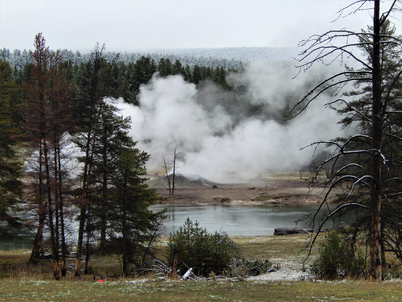 geyser LS