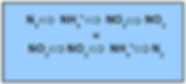 formula nitro denitro.png
