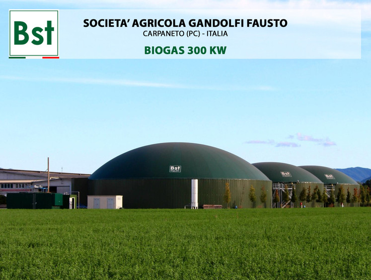 Biogas 300 KWe