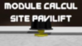 module calcul Pavilift.jpg