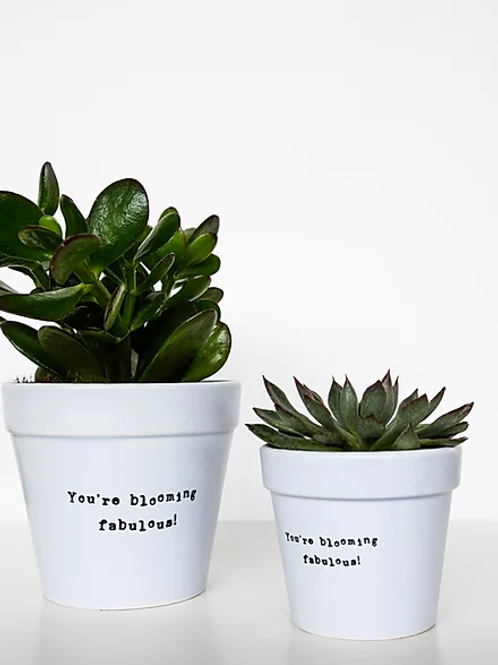 Your're Blooming Fabulous! Small Planter