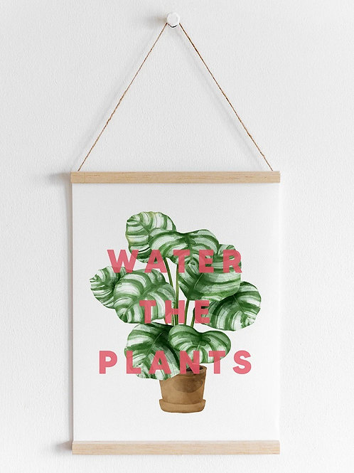 Water The Plants | A4 Print