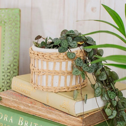 Specked Woven Planter