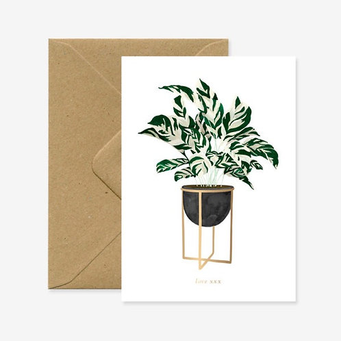 Love Plant Card