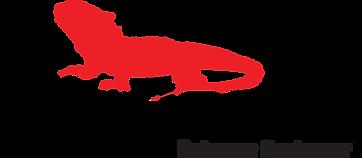 BRONZE_FlipRocks_Logo-Red-blk-Tag-Reg.pn