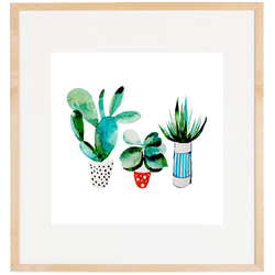 Cactus enmarcada 30x30 varilla chata 1,5 passpartou 5 cm