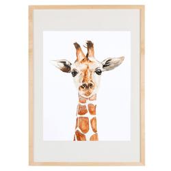 Prints enmarcadas Animales