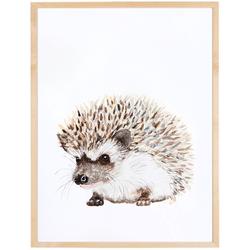 Hedgehog enmarcada varilla chata 1,5  20x30
