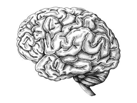 """""""Od wódki rozum krótki"""", czyli jak picie alkoholu wpływa na sprawność naszego mózgu."""