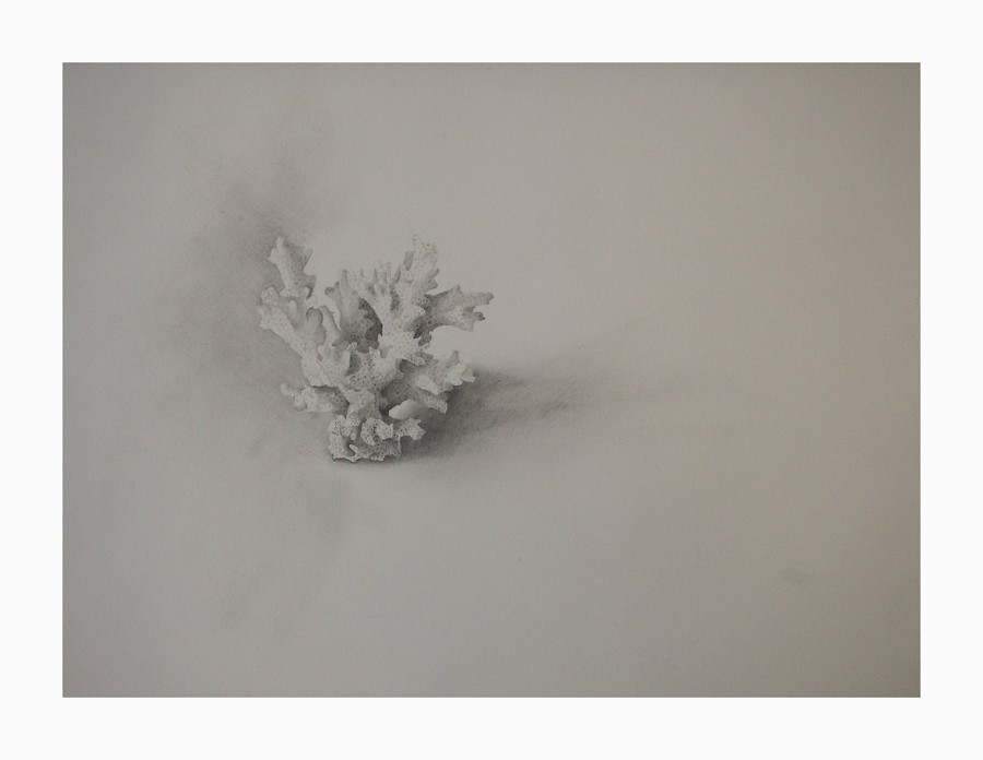 "'Full fathom five', 2009, graphite on paper, 9"" x 7"""