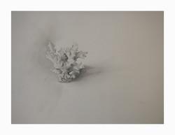 "'Full fathom five', 2009, graphite on paper, 9"" x 7"""