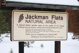 Twin peaks nature sign