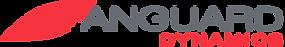 Vanguard Logo_2020.png