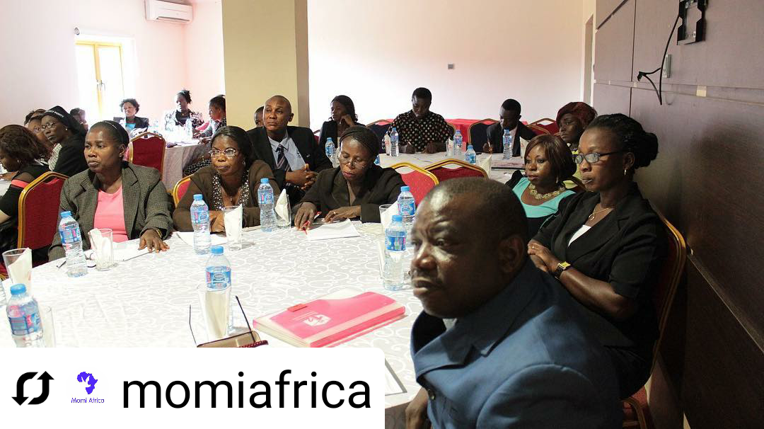 momiafrica_20200211110736.png