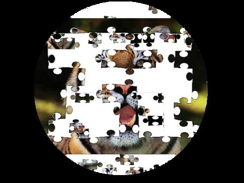 Half of a Puzzle...