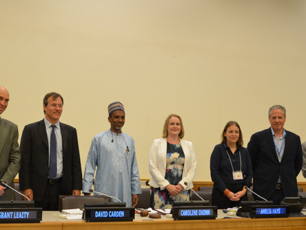 Sustainable Development Goals Implementation in Lake Chad Basin Region: UN System and Non-State Acto