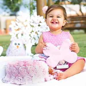 Smash The Cake Alice