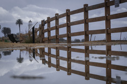 Reflection_3_Sean Hetrick