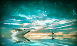 HMKim_Matthew-Dreams_.jpg