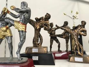 Resin Martial Arts Awards