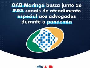 OAB Maringá busca junto ao INSS canais de atendimento especial aos advogados durante a pandemia