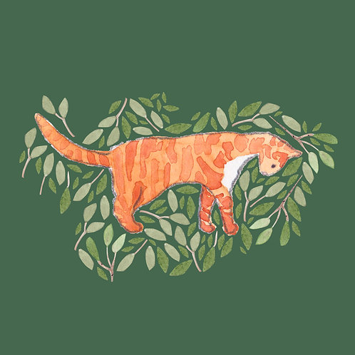 Ginger Tabby Cat Greetings Card by Samantha Hall