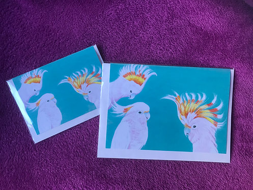 The Major Mitchell Cockatoos Greetings Card by Jayne Crow