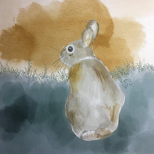 Rabbit at Sunset by Samantha Hall